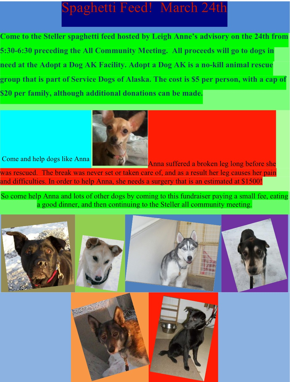 Adopt a dog Ak Spaghetti feed Jessamyn happily geeks out as mom to one son and two yappy dogs named ...